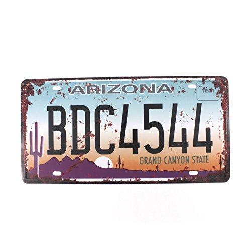 Plate Souvenir Wall (6x12 Inches Vintage Feel Rustic Home,bathroom and Bar Wall Decor Car Vehicle License Plate Souvenir Metal Tin Sign Plaque (ARIZONA BDC4544))