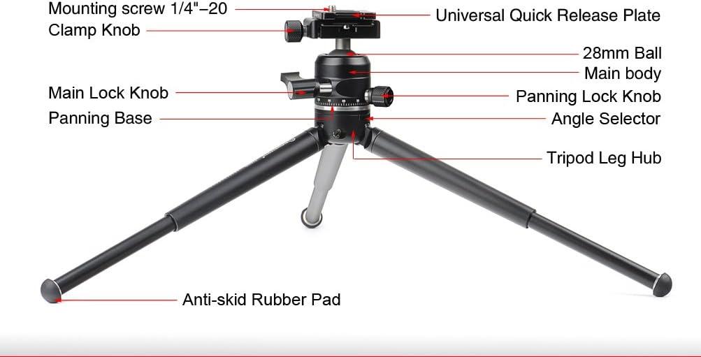 SUNWAYFOTO T1A20D-T Table Top Tripod Kit w XB-28 Low Profile Ball Head 2 Section Sunway