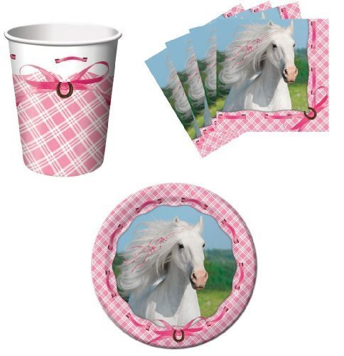Paper Art Heart My Horse Pink Birthday Party Supplies Set Plates Napkins Cups Kit for 16 -