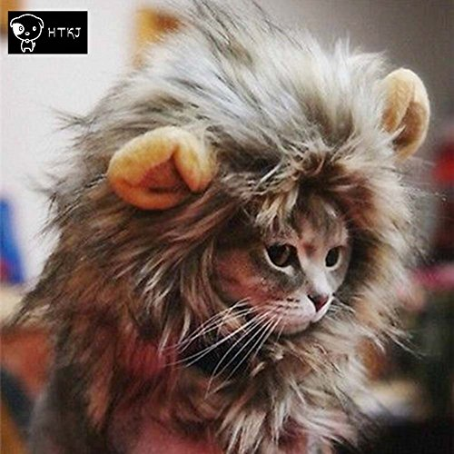 HTKJ  (Lion Costume For Small Dogs)