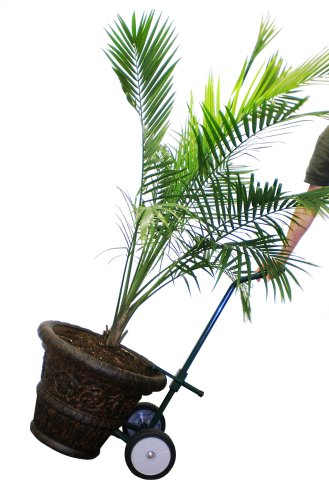 "Harper Trucks Steel Potted Plant and Pot Mover with 8"" Flat-Free Wheels"