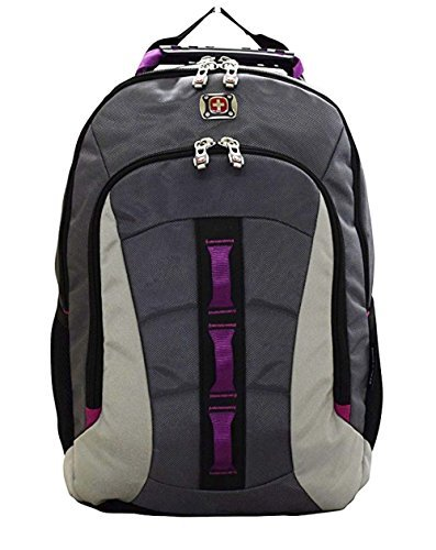 SwissGear Skyscraper Backpack with Laptop Compartment (Magenta) by Swiss Gear