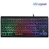 Rainbow LED Backlit 87 Keys Gaming Keyboard, Compact Keyboard with Anti-ghosting USB Wired Keyboard for PC Gamers Office