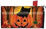 Briarwood Lane Halloween Kitten Magnetic Mailbox Cover Jack o'Lantern Holiday