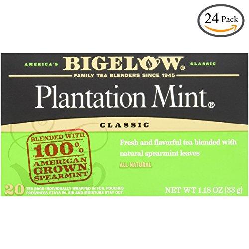 Bigelow Plantation Mint Tea, 20-Count Boxes (Pack of 24) by Bigelow Tea (Image #9)