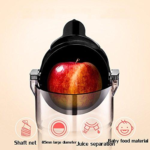DULPLAY Large Diameter Juicer Juice Extractor,Bpa Free Premium Food Grade Stainless Steel Dual Speed Setting Juicer Machine,Bpa Free-Pink by DULPLAY (Image #6)