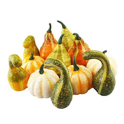 Pumpkins And Gourds - Merryoung 12 pcs Halloween Artificial Pumpkins Assorted Fake Decorative Pumpkins and Gourds Fake Vegetables Ornaments for Fall Decor Thanksgiving Garden Home Harvest Decorations Crafts