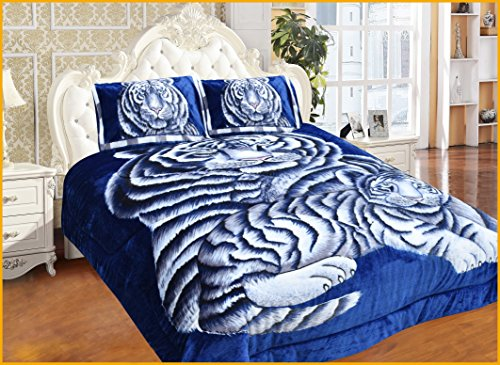 - COCO HOME 3 Piece Super Plush Luxurious Heavy Reversible Tiger Borrego Blanket, Queen, Blue