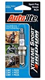 Autolite XS4302DP Xtreme Sport Iridium Powersports Spark Plug