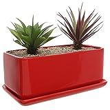 10 inch Rectangular Modern Minimalist Red Ceramic Succulent Planter Pot / Window Box with Saucer