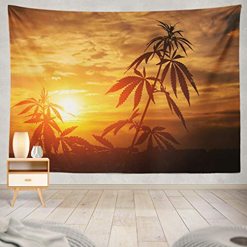 ASOCO Tapestry Wall Handing Marijuana Cannabis Plants Sunshine Outdoor Plant Warm Shades of The Setting Sun Wall Tapestry for Bedroom Living Room Tablecloth Dorm 60X60 Inches