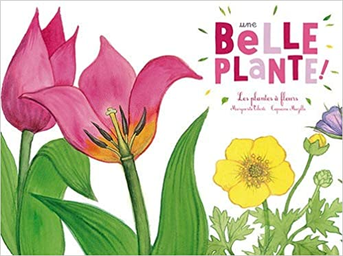 Une belle plante : Les plantes à fleurs Ohé la Science !: Amazon ...