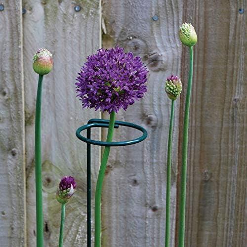 3 Stück Pflanzgefäß-Halterung, Top Ring, Metall, Pflanzenstäbe, Blumen-Zweig, Stützregal, Landwirtschaft, Gartenwerkzeuge