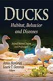 Ducks, , 1622579372