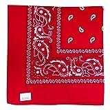 Best Bandanas - Bandana - Classic Paisley Headscarf Review