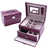 USIX Two-Layer Portable Large Capacity Lockable Jewelry Cosmetics Storage Display Organizer Box with Mirror Lock Drawer, Earrings Bracelets Necklace Rings Accessories Travel Case(Purple)