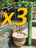 Amazon Lights All-Natural Premium Citronella Outdoor Garden Incense Sticks with 2.5 - 3.0 Hours Burn Time (3 pack)