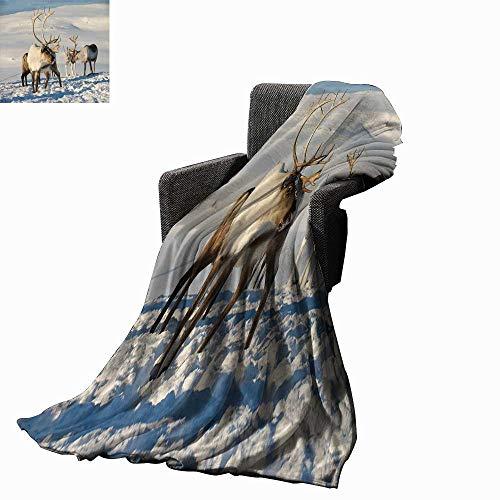 (Winter Custom Design Cozy Flannel Blanket Reindeers in Natural Environment Tromso Northern Norway Caribou Antler Wildlife 70