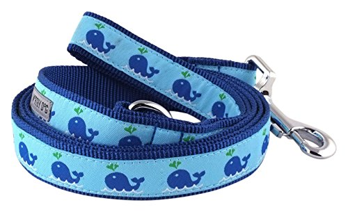 The Worthy Dog Squirt Lead, Blue, 5/8x5 0.625' Lead