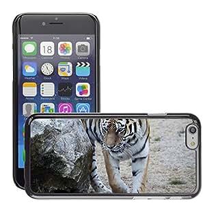 "Print Motif Coque de protection Case Cover // M00127155 Tiger Animales Gatos callejeros // Apple iPhone 6 4.7"""