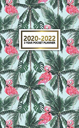 Christmas Tree Trend 2020-2022 Amazon.com: 3 Year Pocket Planner 2020 2022: Tropical Palm Tree