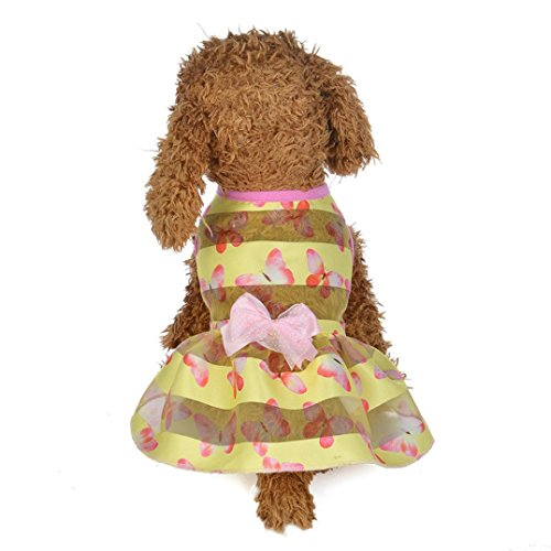 - Wakeu Small Dog Girl Dress Pet Puppy Transparent Colorful Vest Shirt Clothes (M, 02)