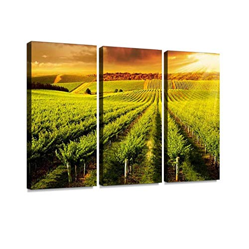 BELISIIS Winery Gold Wall Artwork Exclusive Photography Vintage Abstract Paintings Print on Canvas Home Decor Wall Art 3 Panels Framed Ready to Hang