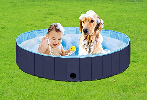Paws of Mind Foldable & Portable Outdoor Swimming Pool, Bathing Tub, for Pets & Toddlers, by, Extra Large 63 x 12 in, Dog Cat Whelping Box (Bottom Stand Tank)