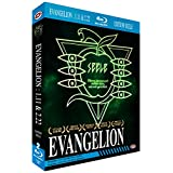 Evangelion 1.11 You Are (Not) Alone + Evangelion 2.22 You Can (Not) Advance