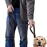 Wellbro Luxury Genuine Leather Double Handle Dog