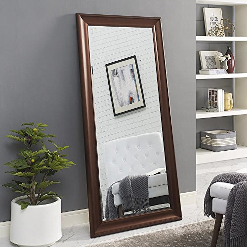 Naomi Home Framed Mirror Oil Rubbed Bronze/65