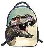 3D Dinosaur Printed Kids Backpack Toddler Waterproof School Bags for Kindergarten Dinosaur1