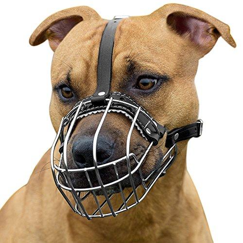 Buy basket muzzle