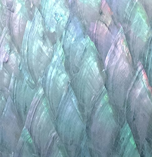 Natural Abalone Sheet 5-1/2-Inch by 9-3/8-Inch Donkey Ear ()