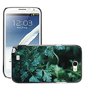 Hot Style Cell Phone PC Hard Case Cover // M00306848 Nature Plant Herb Lovage Growth // Samsung Galaxy Note 2 II N7100