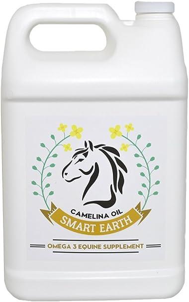 Earth & Wood Blend Essential Oil (Huge 2oz Bottle) Bulk