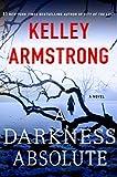 A Darkness Absolute: A Novel (Casey Duncan Novels)