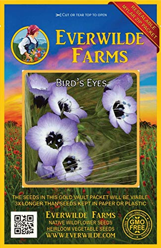 Everwilde Farms - 2000 Bird's Eyes Native Wildflower Seeds - Gold Vault Jumbo Seed -