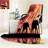 vanfan Silky Soft Plush Warm Blanket Autumn Winter Elephant Silhouettes A River Africa Animals Wildlife Adventure Landscape,Silky Soft,Anti-Static,2 Ply Thick Blanket. (62''x60'')