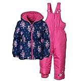 Pink Platinum 2-Piece Snowsuit