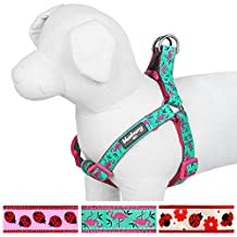 """Blueberry Pet Step-in Pink Flamingo on Light Emerald Dog Harness, Chest Girth 26"""" - 39"""", Large, Adjustable Harnesses for Dogs"""