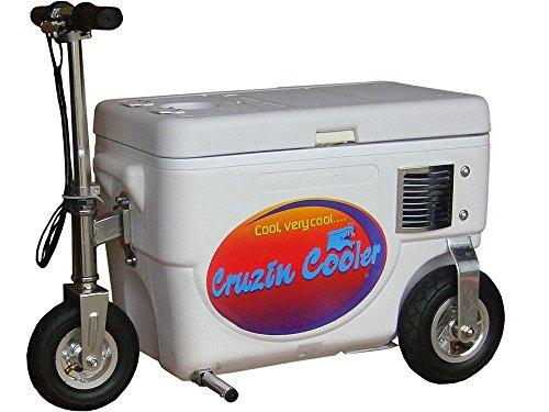 1000 watt electric scooter - 9
