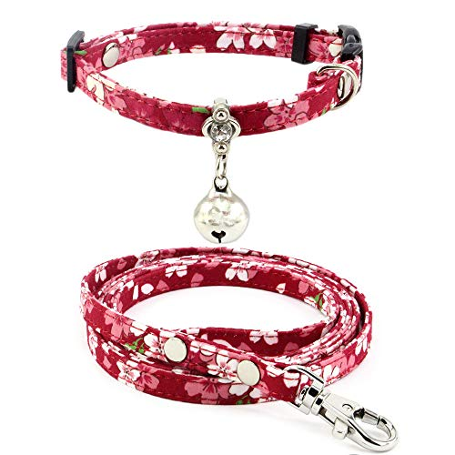 (Dogs Kingdom Pet Dog Cat Safety Breakaway Collar Leash Set with Charming Bell Adjustable Collar for Small Dog Puppy Cat Kitten Kitty,Red,XS:6-9