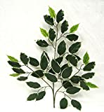 Hawaii Ficus Spray 24 '' Filler Greenery Silk Wedding Flowers Centerpieces
