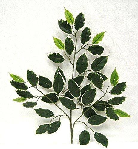 Hawaii Ficus Spray 24 '' Filler Greenery Silk Wedding Flowers Centerpieces by Dorigan Artificial Art Flowers