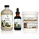 TRDV Protocol for Cats (Lrg, Beef) - 3 Part Program for Digestive Health and Stability
