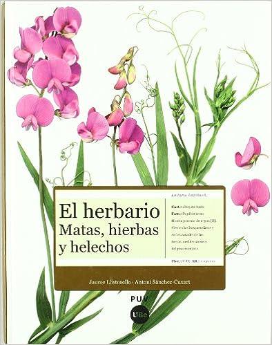 El herbario: matas, hierbas y helechos.