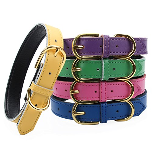 AOLOVE Basic Classic Padded Leather Pet Collars for Cats Puppy Small Medium Dogs (X-Small (Neck 8.0