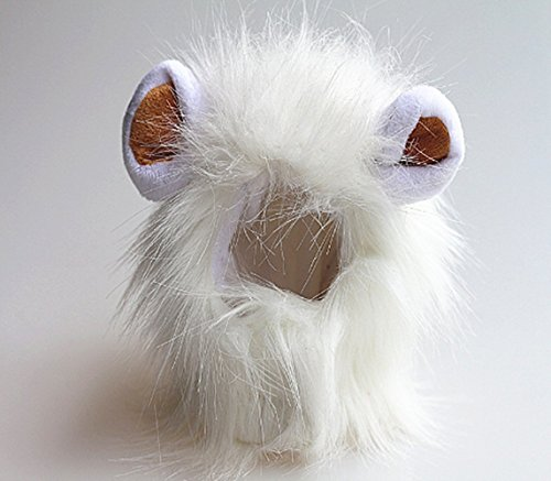 Sporer@ Pet Costumes Lion Mane Wig Cat Costume and Small cat and dog Costume with Complimentary Feathered Catnip Toy Hea(White (E))