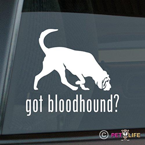 Got Bloodhound Sticker Vinyl Auto Window blood hound ()